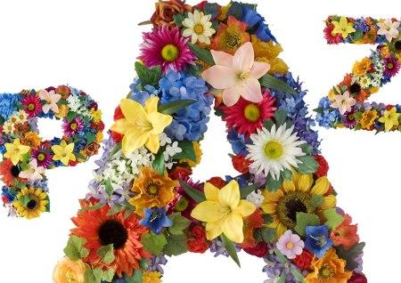 paz_flores